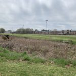 Retention Pond Cleaning