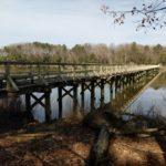 Footbridge Replacement